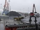Trung Quốc cấm nhập khẩu toàn bộ than từ Triều Tiên