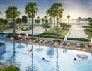 """5 đặc điểm """"hạng nhất"""" của The Sapphire Residence gây bão thị trường Bất động sản Quảng Ninh"""