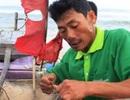 Cá về, ngư dân vui trở lại
