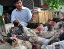 """Thu nhập cao từ nuôi trồng """"hàng độc"""": Sống khỏe với con đặc sản"""