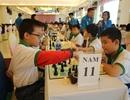 Hơn 900 VĐV dự giải vô địch cờ vua trẻ toàn quốc năm 2017