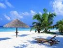 Hội An Royal Residence đất nền ven biển An Bàng hút giới đầu tư ngay khi ra mắt