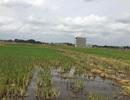 Bắc Giang: Buông lỏng quản lý đất công, cấp Sở chấn chỉnh, huyện vẫn tái phạm!