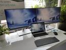 HP tung loạt màn hình máy tính EliteDisplay thế hệ mới tại Việt Nam, giá từ 4 triệu đồng