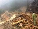 Thông tuyến đường Nha Trang - Đà Lạt bị tê liệt do bão Damrey