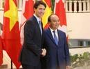 Lễ đón chính thức Thủ tướng Canada tại Phủ Chủ tịch