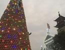 Cây thông Noel ghép bằng 6.000 nồi đất được xác lập Kỷ lục Việt Nam