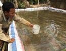 Bài 1: Giải bài toán nước mặn bủa vây