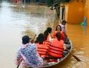 Tấp nập du khách trải nghiệm lũ lụt ở Hội An