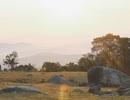 Vẻ đẹp hoang sơ đầy thơ mộng của cao nguyên Đồng Cao
