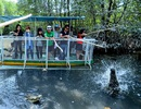 Trải nghiệm cảm giác mạnh với trò câu... cá sấu