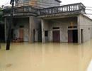 Ninh Bình thiệt hại hơn 1.000 tỷ đồng trong trận lụt lịch sử