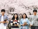 Thêm cơ hội cho sinh viên CNTT Việt Nam được làm việc tại Hàn Quốc