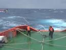 Tàu cá chìm dần, 5 ngư dân chờ cấp cứu