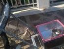 Hai nữ sinh dùng phế phẩm sáng chế bếp năng lượng mặt trời