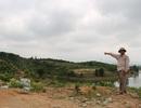 Lão nông kiếm tiền tỷ mỗi năm trên mảnh đất cằn