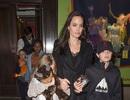 Angelina Jolie gày gò xuất hiện tại London