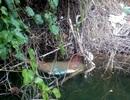 Vẫn chưa xác định danh tính xác chết nổi trên hồ thủy điện