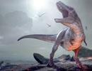 Tiết lộ bất ngờ về sự tuyệt chủng trên Trái Đất