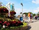 Nha Trang: Hội hoa Xuân Tết Mậu Tuất kéo dài 2 tuần phục vụ du khách