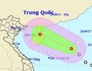 Áp thấp nhiệt đới di chuyển về phía Bắc Vịnh Bắc Bộ