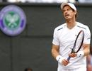 Wimbledon: Andy Murray vỡ mộng bảo vệ ngôi vô địch