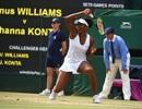 """""""Lão tướng"""" Venus Williams lần thứ chín vào chung kết Wimbledon"""