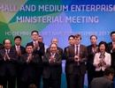 Các sự kiện nổi bật trong năm APEC 2017 của chủ nhà Việt Nam