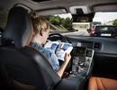 Mỹ: Giới trẻ có xu hướng thích xe tự lái