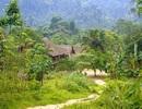 """Quảng Bình: Bản làng """"đặc biệt"""" bên kỳ quan Sơn Đoòng"""