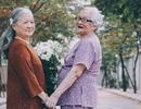 Bộ ảnh đôi bạn già 80 tuổi bên cúc họa mi gây xúc động dân mạng