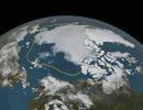 Băng biển trên toàn cầu đang ở mức thấp nhất từng ghi nhận được
