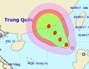 Hình thành cơn bão số  8 trên Biển Đông