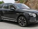 """Rolls-Royce nói """"Không"""" với xe hybrid, Bentley hứng thú với hybrid sạc điện"""