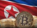 Nhờ bitcoin, Triều Tiên vẫn kiếm bộn tiền dù bị trừng phạt