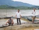 Thủy điện Hòa Bình xả lũ làm cá chết: Dân có được đền bù?
