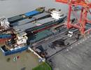 Xuất khẩu thép xây dựng Hòa Phát tăng hơn 9 lần so với cùng kỳ