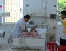 Vụ 4 trẻ nhập viện sau ăn vải: Gửi mẫu bệnh phẩm lên tuyến Trung ương xét nghiệm