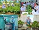 Thừa Thiên Huế: Cấp dưỡng mầm non công lập hoang mang sẽ bị cắt lương nhà nước