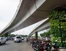 Từ 3/7, lưu thông qua 2 cầu vượt vào Tân Sơn Nhất như thế nào?