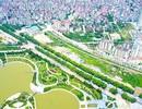 Cận cảnh tuyến đường Hà Nội dự kiến chặt hạ hơn 1300 cây xanh