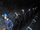 EVN xin giảm mua than, nhiều lao động ngành than nguy cơ mất việc