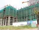 Chủ đầu tư dự án một khách sạn tại Đà Nẵng bị phạt 320 triệu đồng