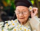 Xúc động bộ ảnh bà ngoại 99 tuổi bên cúc họa mi