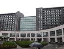 Trung Quốc với mối lo tham nhũng ăn mòn học thuật