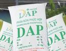 """""""Giải cứu"""" nhà máy DAP thua lỗ ngàn tỷ, vẫn còn những nỗi lo"""