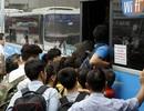 """Hà Nội """"trảm"""" 12 xe khách không chuyển luồng tuyến"""