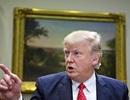 Ông Trump công kích hệ thống pháp lý sau khi thua kiện