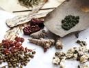 Tìm ra hoạt chất trong thuốc đông y liên quan với ung thư gan