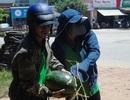 """Quảng Bình:  Căng mình giữa nắng nóng """"giải cứu"""" dưa hấu cho nông dân Quảng Ngãi"""